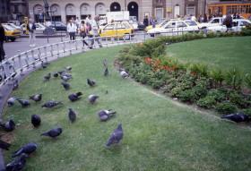 Milan – Piazza della Scala