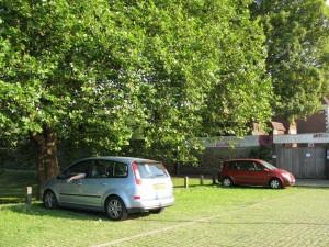 Il Parcheggio Verde (4)