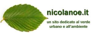 Nicola Noe