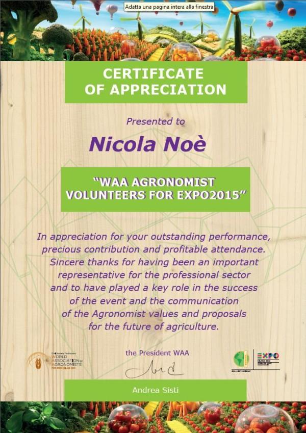 WAA – Certificate of Appreciation