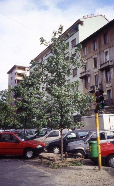 Via Borsieri (2) - 1995