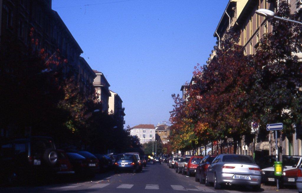 Via Borsieri - 2005-09-29 -Liquidambar
