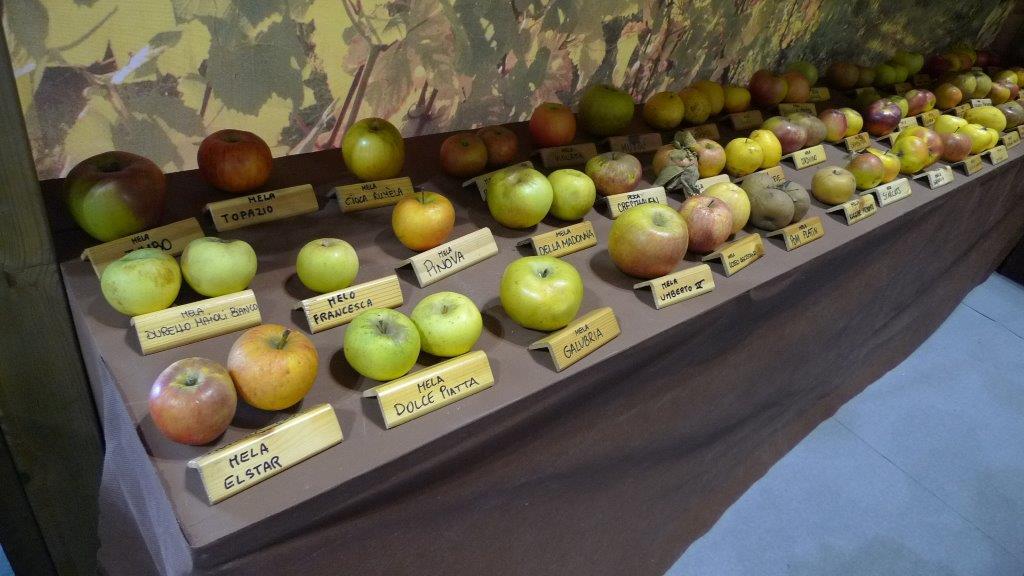 frutti antichi (1)