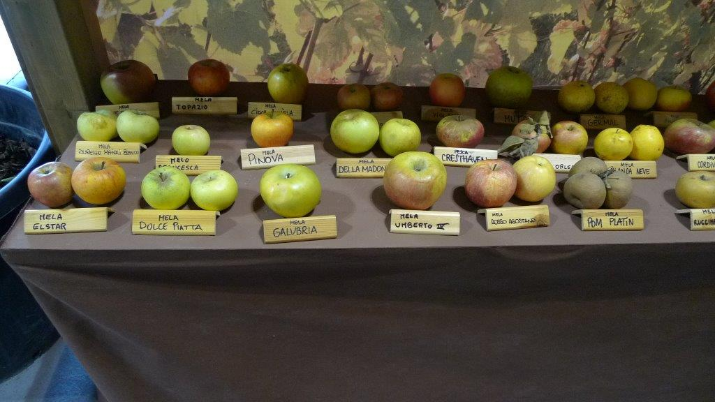 frutti antichi (2)