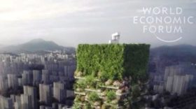 China's vertical forest will fight pollution and produce 60kg of oxygen a day