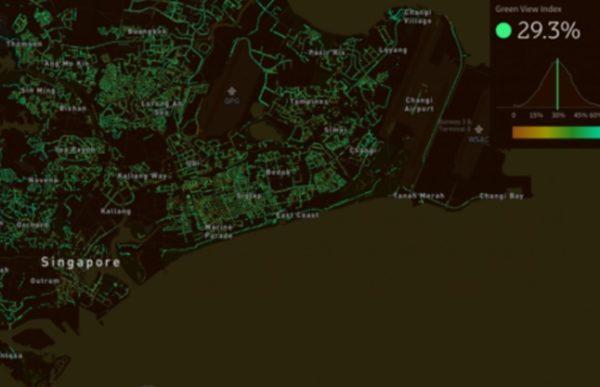 Una sperimentazione per misurare la quantità di alberi in 17 città nel mondo