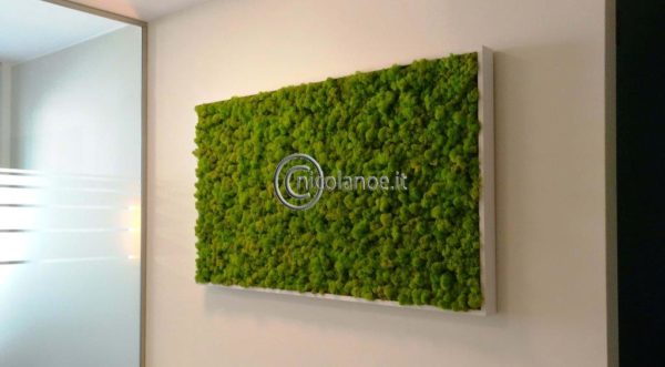 Stabilized plant green wall – Studio commercialista di un dottore agronomo!