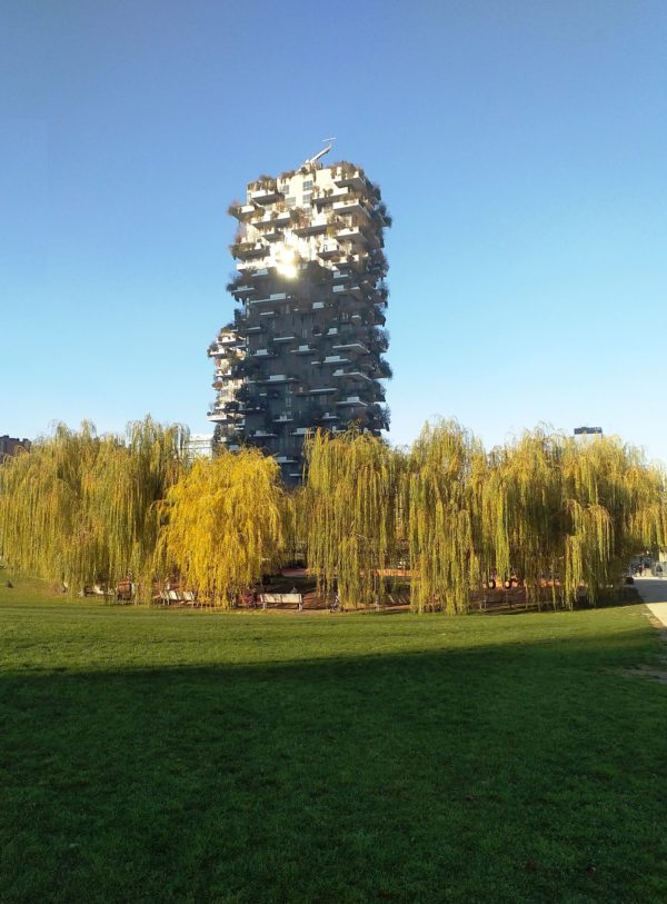 Milan City Park – Salix and Vertical Forest Skyscrapers
