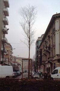 2006-02-21_Impianto3